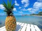 circular informativa nº119-2020: Nos vamos de vacaciones